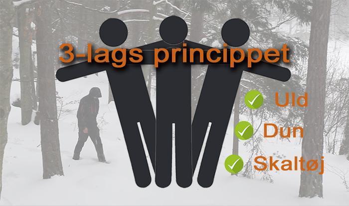 3-lags princippet